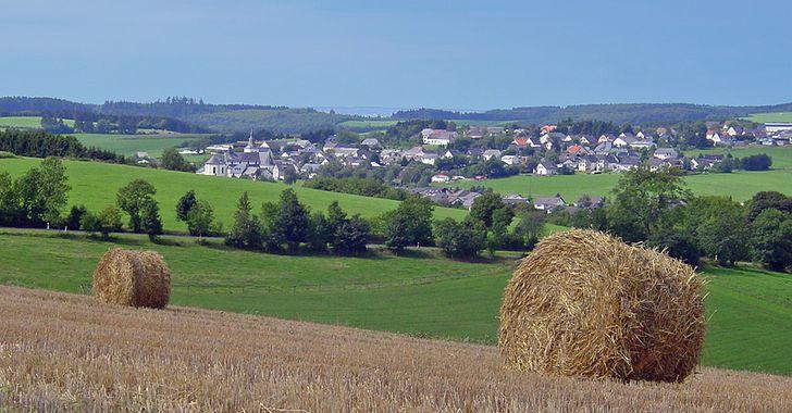Eifel - typische Landschaft in der Schneifel bei Bleialf